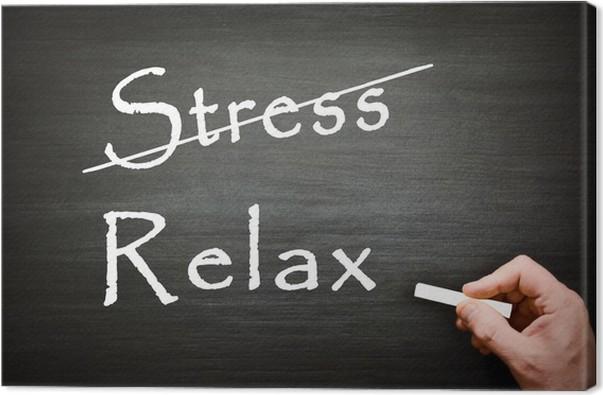 Examens : transformez votre stress en allié !